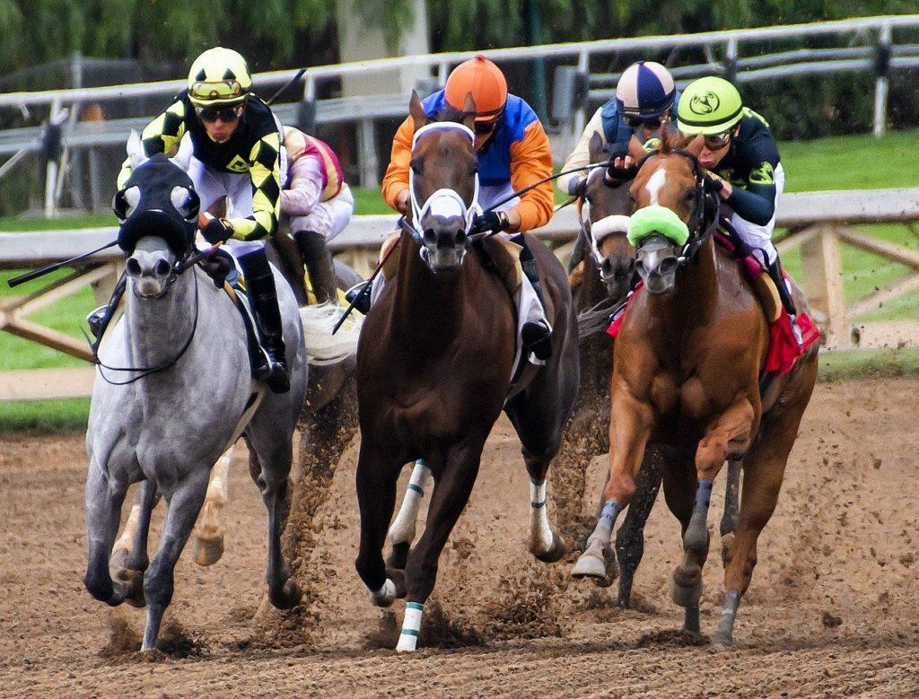horse racing guys trip